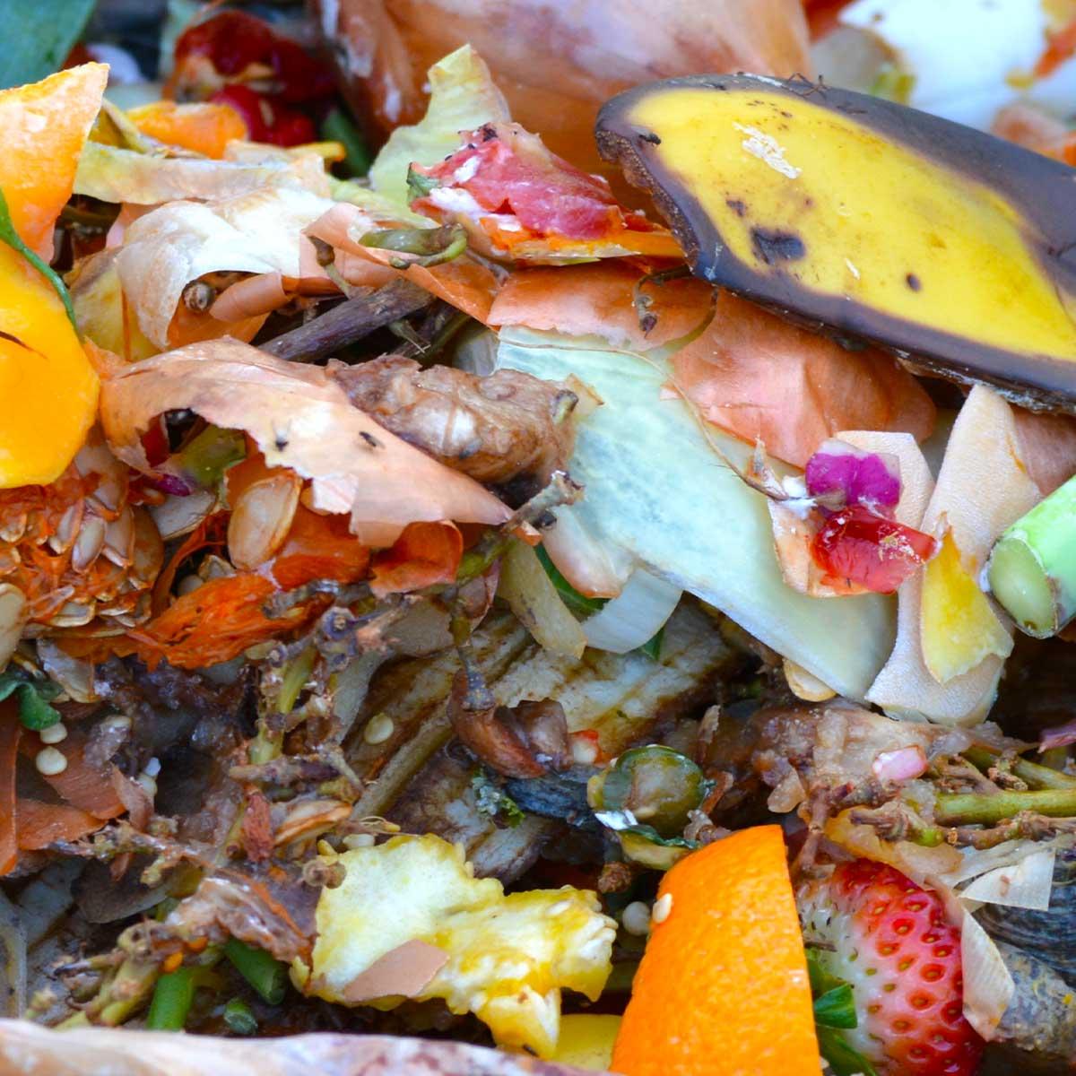 Компост, плодови и растителни отпадъци