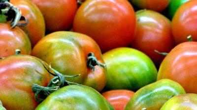 Зелени домати и розови домати