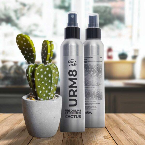 Ароматизатор за въздух Cactus с дезинфектант