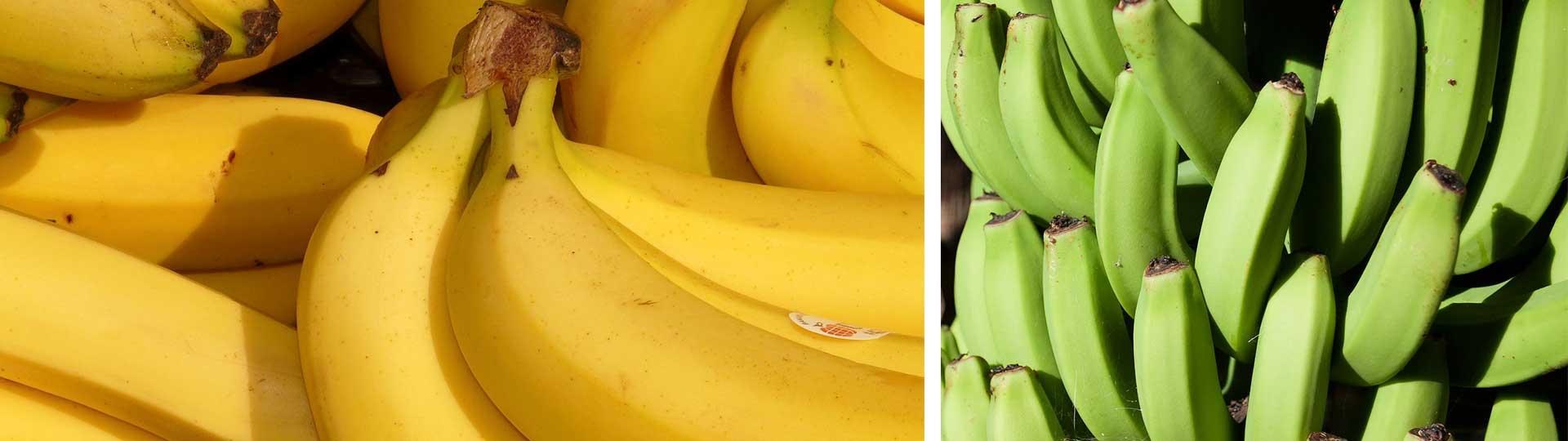 Жълти и зелени банани