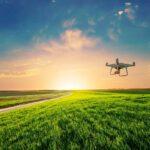 Модерно земеделие: Дрон над поле със зелена царевица