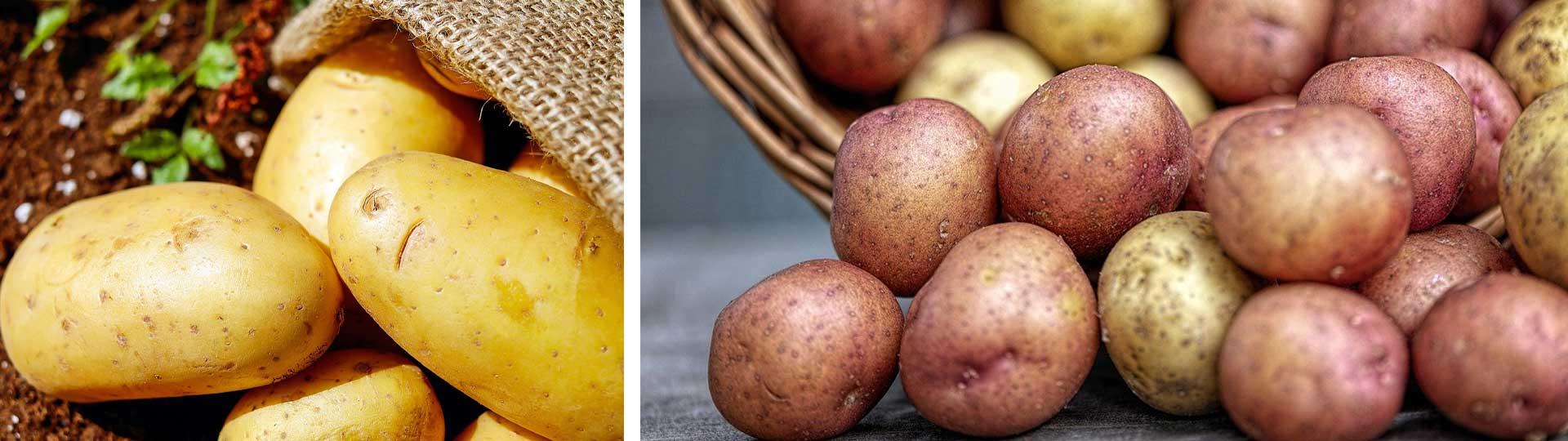 Колаж от две изображения с пресни картофи: жълти и розови